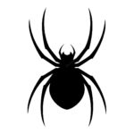 Swarming Bee Web Design, Web Design Lincoln, Website Designer, Website Management